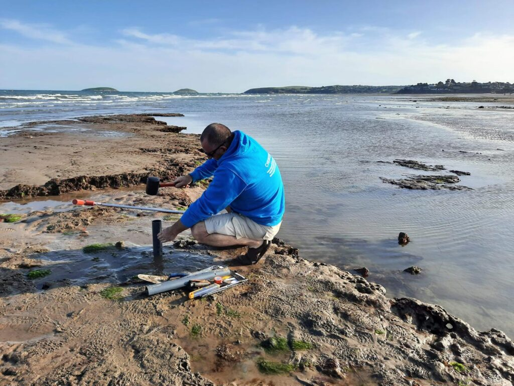 Extracting cores from the exposed inter-tidal peat at The Warren.