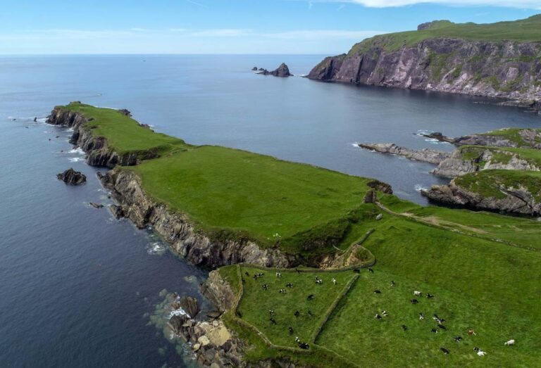 Aerial view of Ferriter's Promontory Fort and Castle, where the CHERISH excavation will take place this summer.