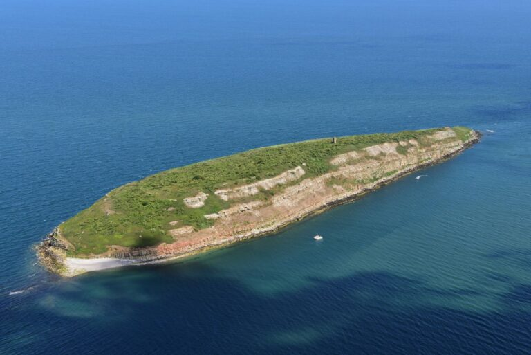 Puffin Island from the air, June 2019