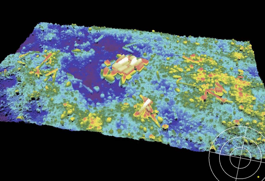 """Multibeam bathymetry around the wreck the """"Bronze Bell"""", including Carrara Marble, anchors and cannon. Red is shallow, getting deeper towards blue"""