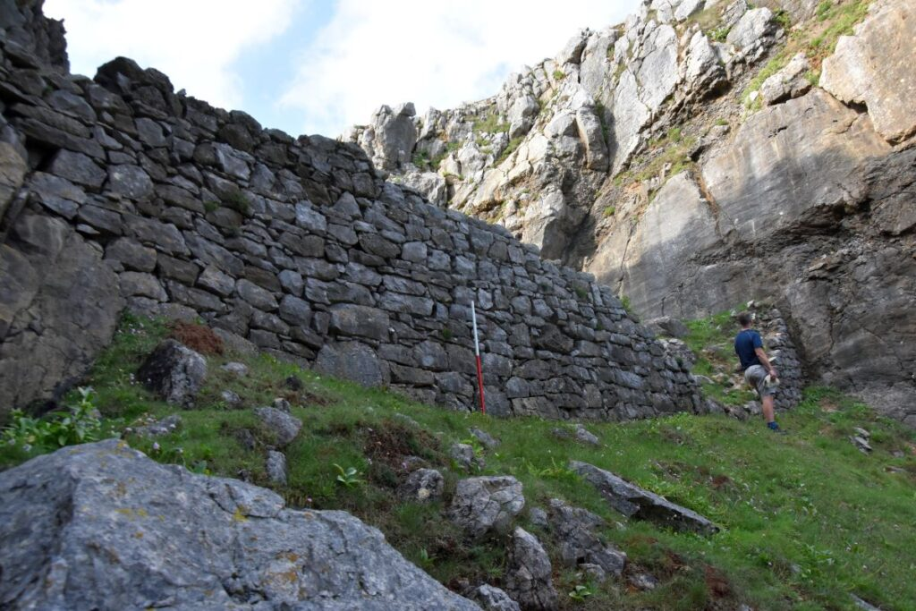 The historic wall in a coastal gully below Crickmail Down